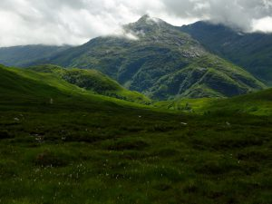 The Cape Wrath Trail - Lush greenery by Kinloch Horn