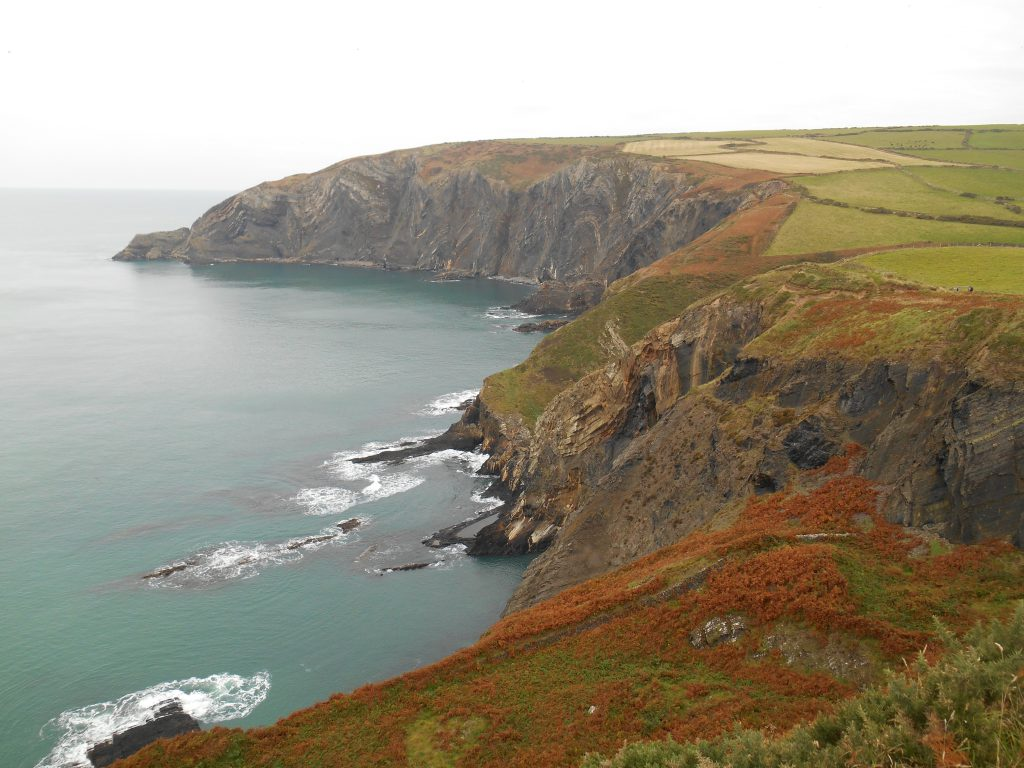 Cliffs with fields above on the coast on Pembrokeshire Coast Path