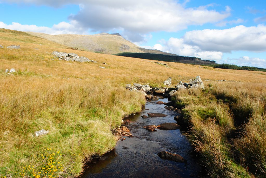 Small stream on a sunny day - Snowdonia Way