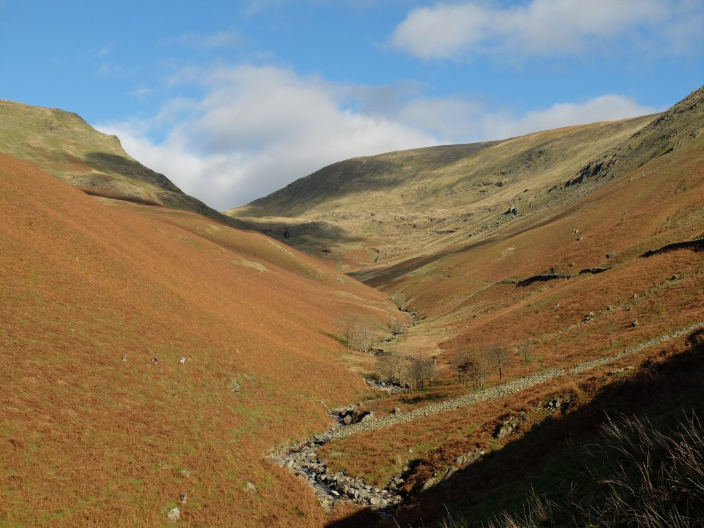 Bracken covered hillside in The Lake District on The Coast to Coast West