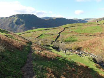 Coast to Coast Scene with Dry stone walls and farmers fields in England