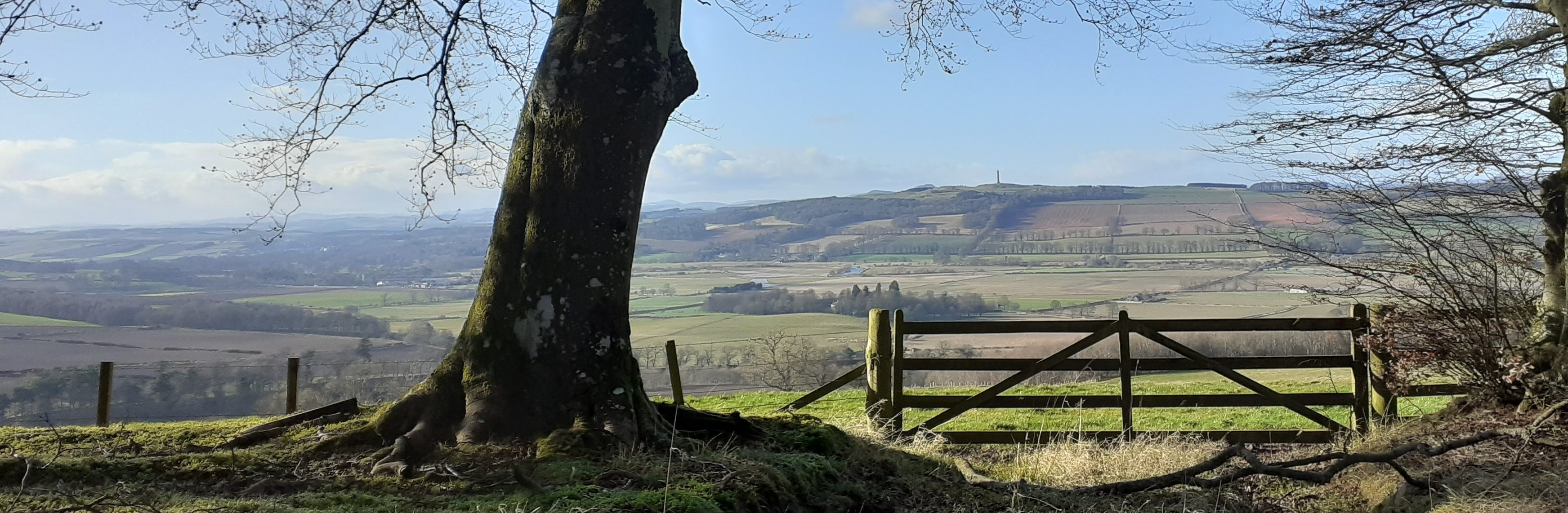 St Cuthbert's Way, Crailing