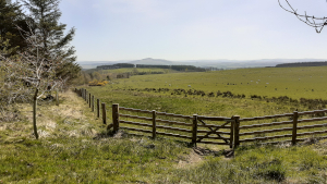 Scottish Borders Farmland